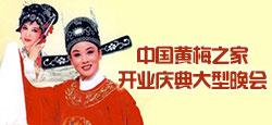 中國黃梅之家開業慶典大型晚會