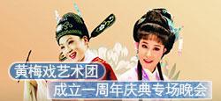 黃梅戲藝術團一周年慶典晚會