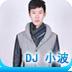 DJ 小波
