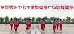 炫舞秀场中老年歌舞健身广场歌舞健身