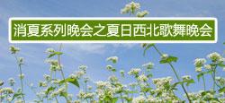 消夏系列晚会之夏日西北大型歌舞晚会