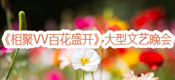 《相聚VV百花盛开》大型文艺晚会