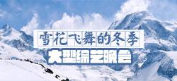 """""""雪花飞舞的冬季""""大型综艺晚会"""