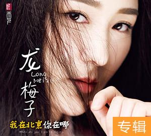 龙梅子《我在北京你在哪》专辑